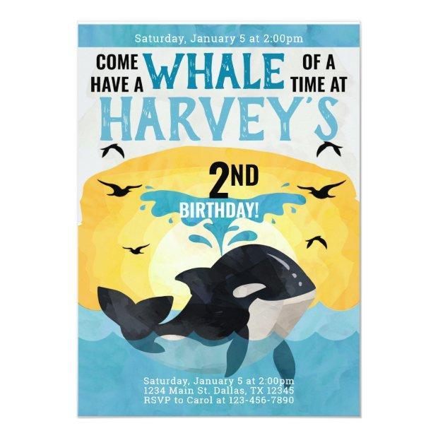Orca Whale Birthday Party Invitation Invite