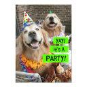 golden retriever yay it's a party invitations