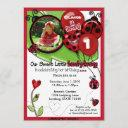 sweet ladybug birthday invitation adorable (photo)